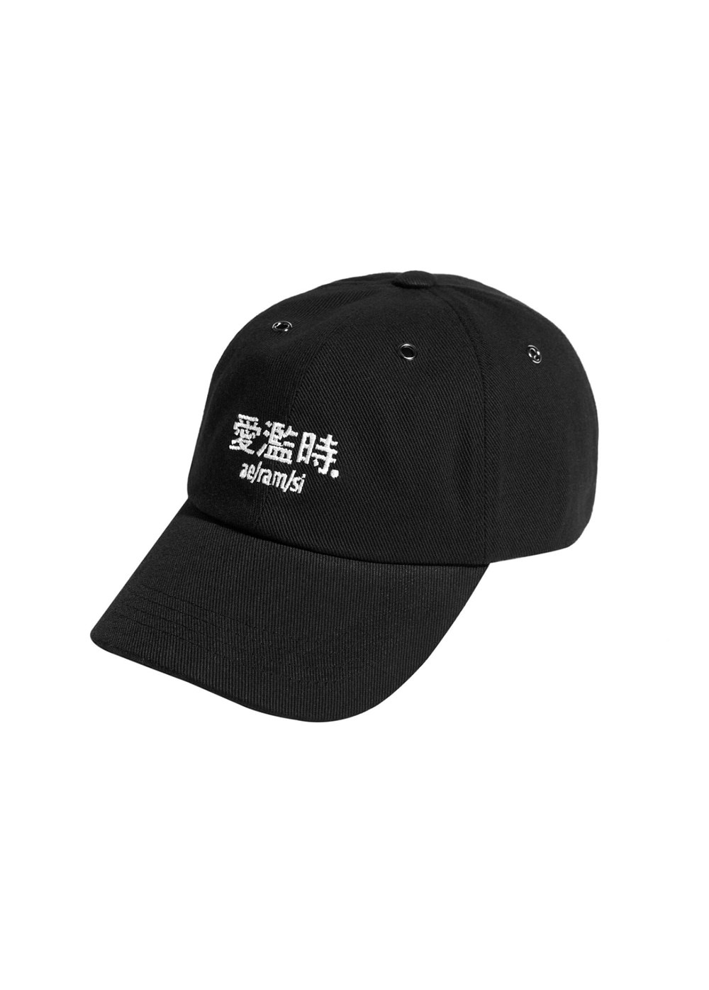 LMC AERAMSI WORDS 6 PANEL CAP black